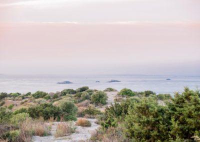 Primrose In Ibiza 09 2018 02
