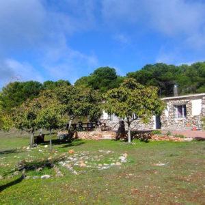 Casita Verde Granada 1